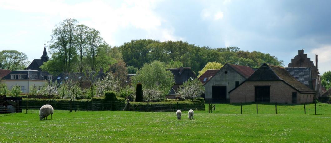 Het graafschap Zutphen