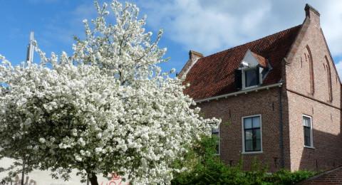 Rustig pleintje voor B&B Het Lerinckhuis in Zutphen