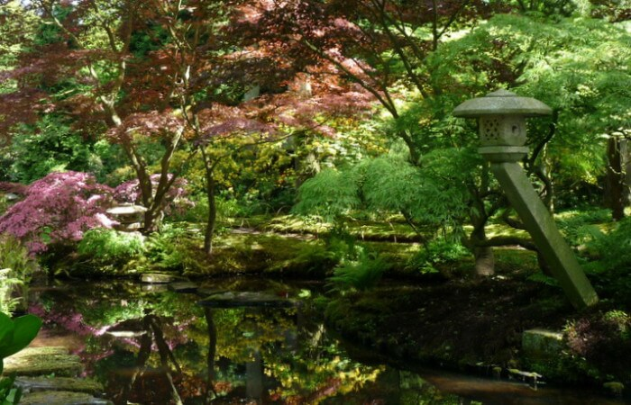 Kleurrijke Japanse tuin in Den Haag