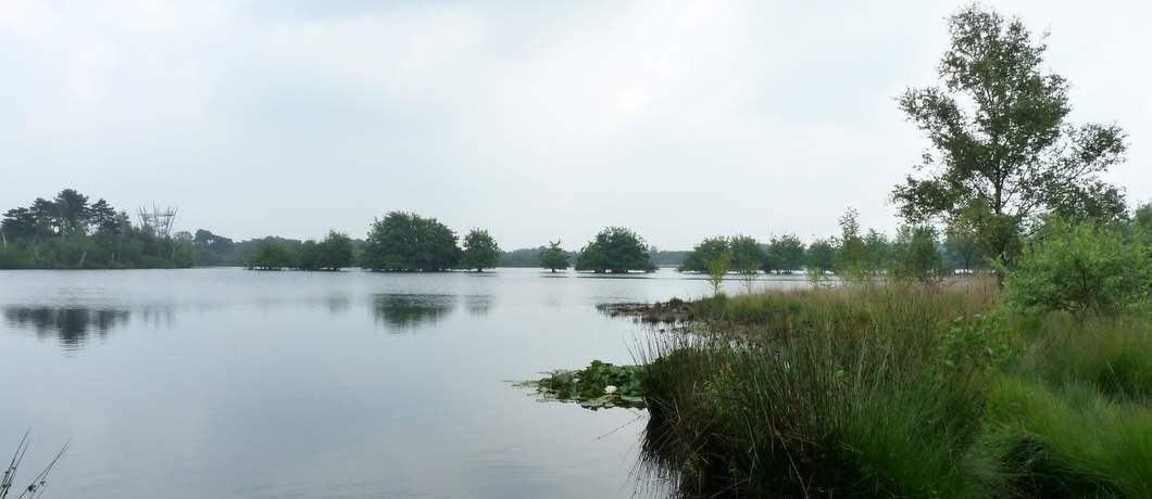 Flaesven op landgoed De Utrecht