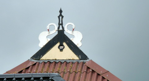 uilenbord met zwanen op een Friese boerderij