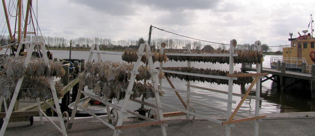 Gerookte bokking van palingrokerij Gaele Postma in Zoutkamp