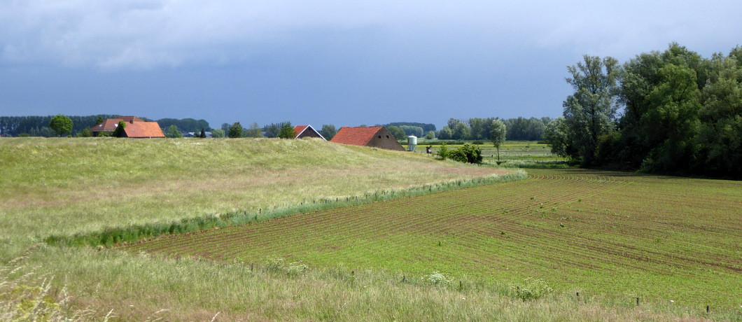 boerderijen Ooijpolder