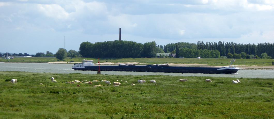 vrachtschepen op de Waal