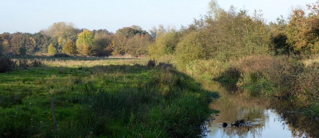 Natuurlijke loop van de Tungelroysebeek in De Krang