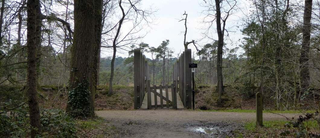 Heide landgoed Twickel (foto Davides)