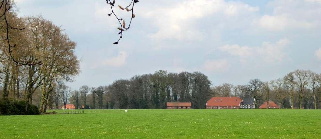 Pachtboerderijen op landgoed Twickel (foto Davides)