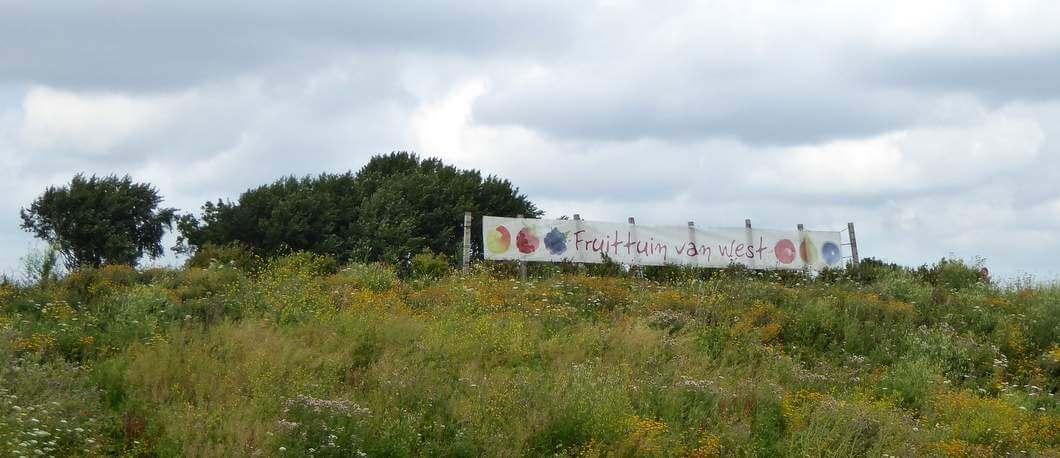 Fruittuin van West (Foto: Davides.nl)
