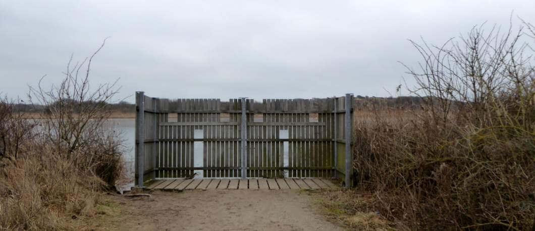 Vogelkijken in natuurgebied Hollands Duin