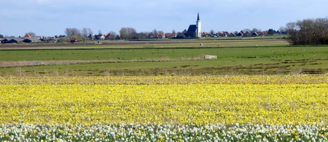 Uitzicht op het kerkje van Den Hoorn bij het fietsen op Texel
