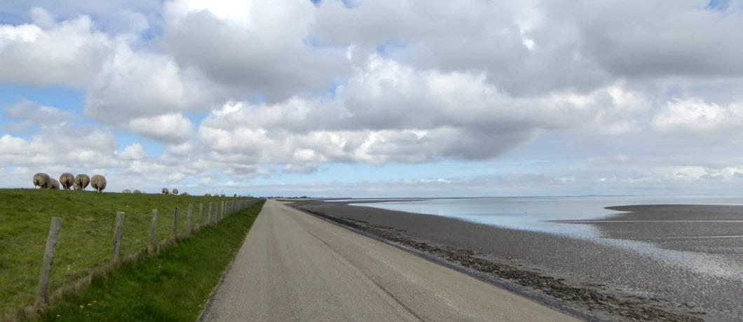 Waddenzeedijk fietsen op Texel