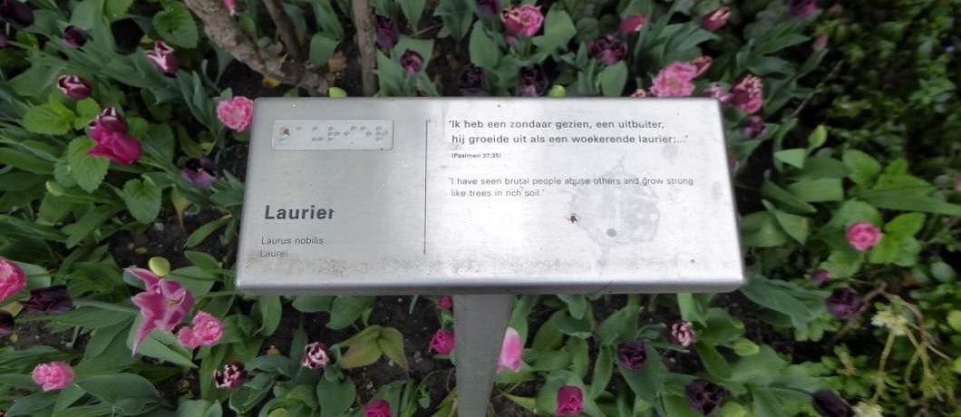 Bijbelse planten en bomen in de tuin van wat ooit het Bijbels Museum was