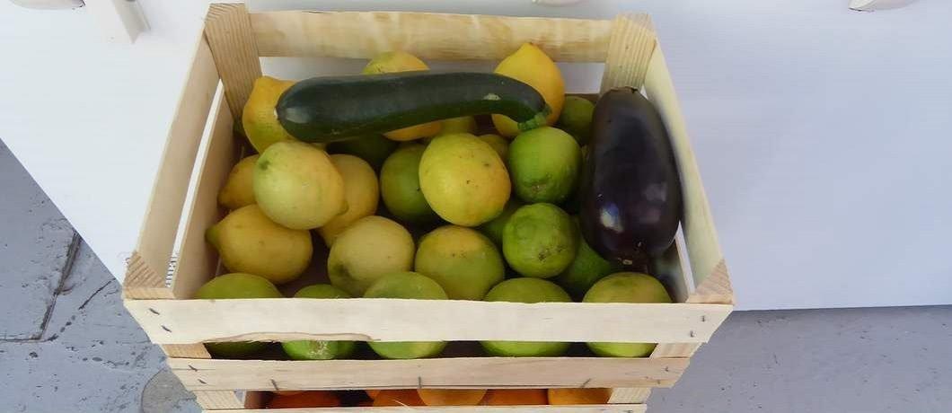 Kisten met biologische citroenen uit Sardinië