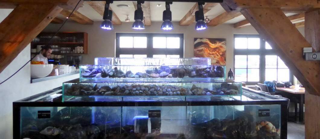 De 4 verdiepingen van het homarium van visrestaurant 't Pakhuus