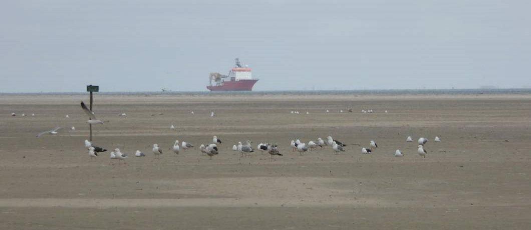 Schip voor de kust van Texel
