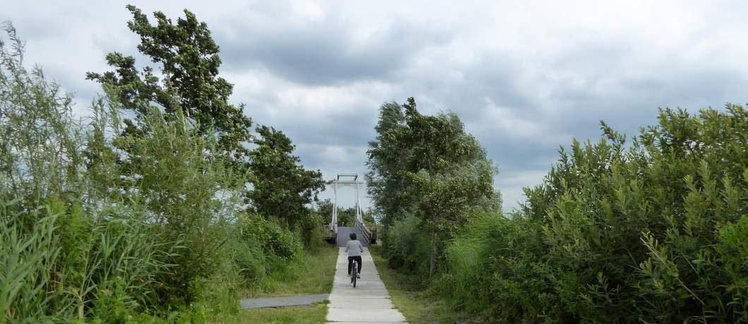 Brug voor wandelaars en fietsers bij de Nieuwkoopse Plassen
