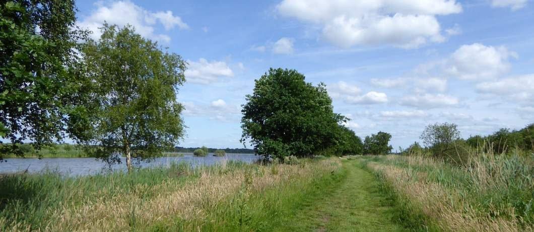 graspad-wandelen-ankeveense-plassen-davides