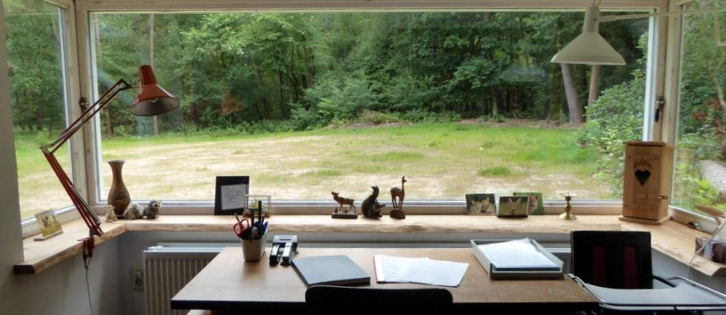 Bureau De Witte Raaf in Oude Willem