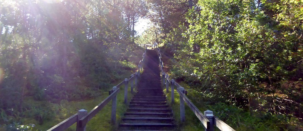 Van bos naar duin geluidswandeling Vlieland Sountrackcity