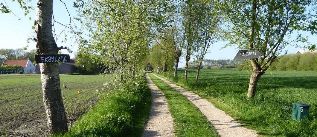 Oprit bomenlaantje B&B Frankrijk-Noord