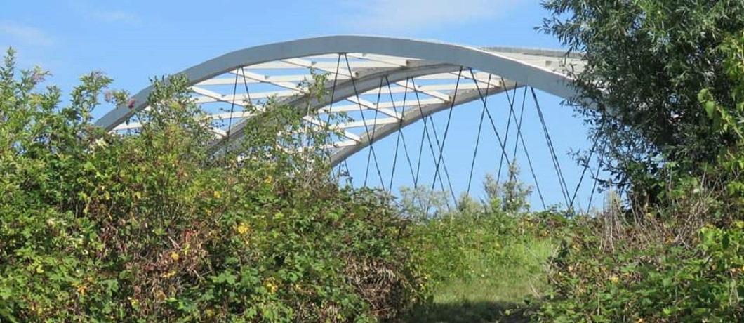 De Van Brienenoordbrug vanaf het Eiland van Brienenoord