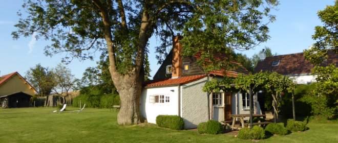 Charmant vakantiehuisje Duivenhoekseweg 10 met weids uitzicht over de velden achter de Westerschelde