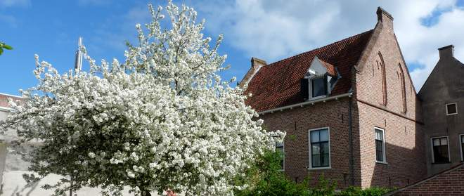 B&B Lerinckhuis: slapen aan een autovrij stil pleintje in het centrum van Zutphen