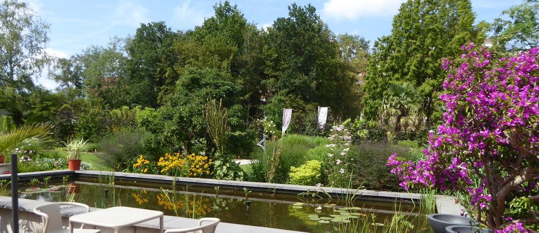vijvers-botanische-tuin-zuidas-davides