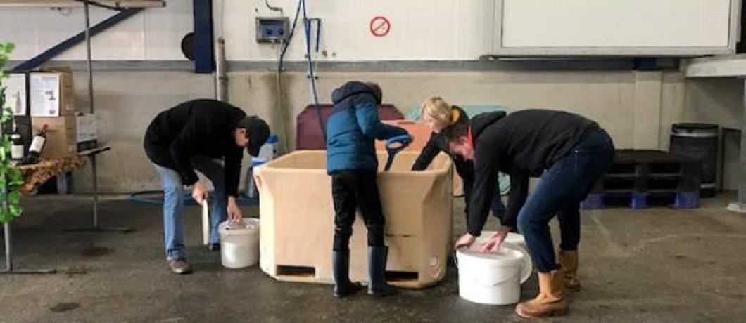 ijs-zeeverse-vismarkt-wieringen-davides