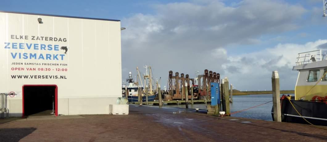 visafslag-den-oever-zeeverse-vismarkt-wieringen-davides