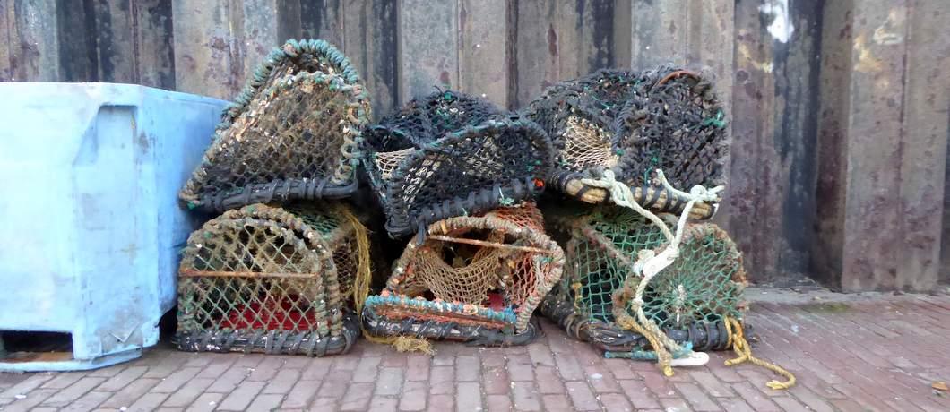 visnetten-zeeverse-vismarkt-wieringen-davides