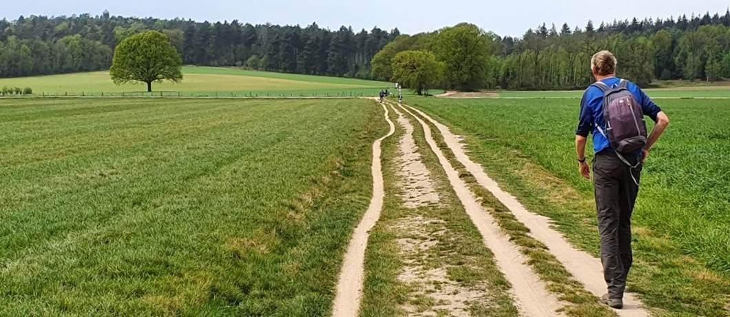 Richting-Hulzenberg-wandelen-in-Montferland-davides