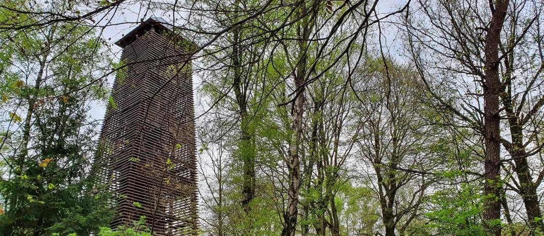 Uikijktoren-wandelen-in-montferland-achterhoek-davides