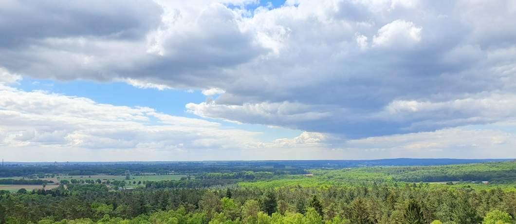Uitzicht-uitkijktoren-wandelen-in-Montferland-davides