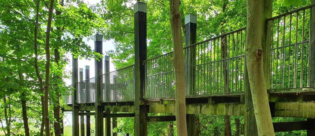 uitkijktoren-wandelen-amerongen-utrechtse-heuvelrug-davides