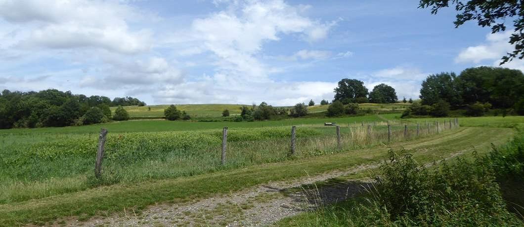 wandelen-omgeving-landgoed-heerdeberg-davides