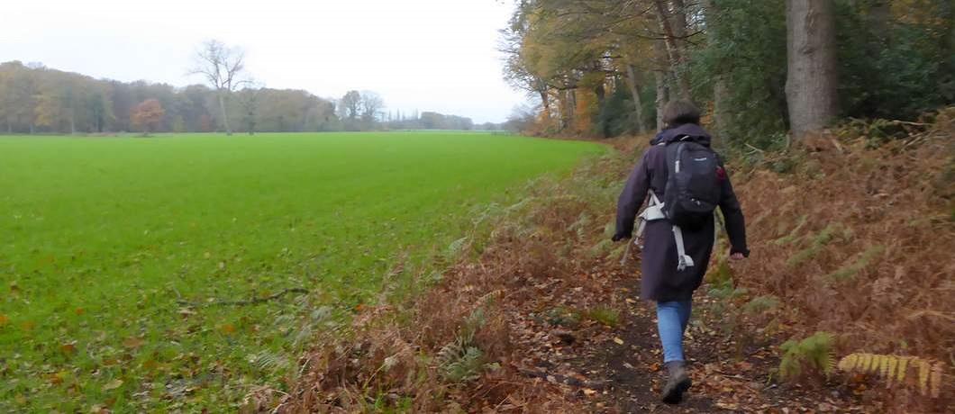 coulissenlandschap-trage-tocht-winterswijk-ratum-davides