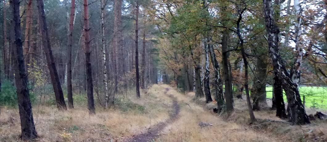 grens-komiezenpad-trage-tocht-winterswijk-ratum-davides