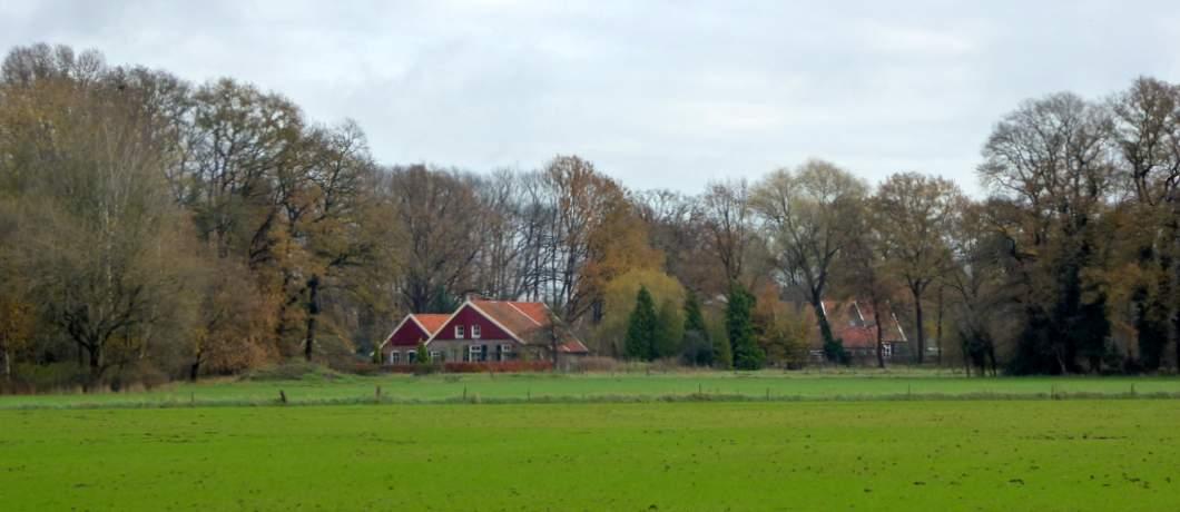 ossenbloed-rood-dak-trage-tocht-winterswijk-ratum-davides