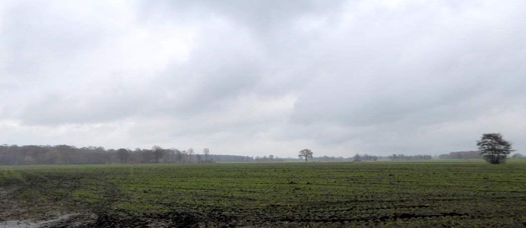 velden-trage-tocht-winterswijk-ratum-davides