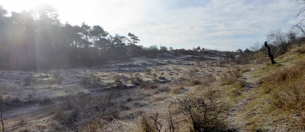 duinvallei-wandelen-duinen-heemskerk-davides