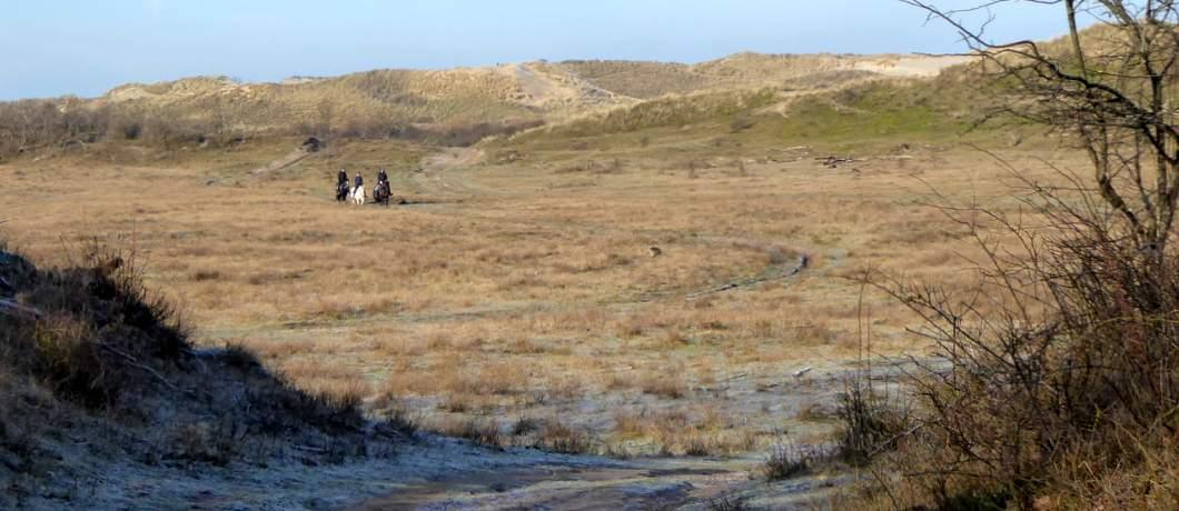 ruiters-wandelen-duinen-heemskerk-davides