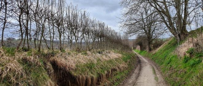 Eén van de vele holle wegen die je op de route tegenkomt