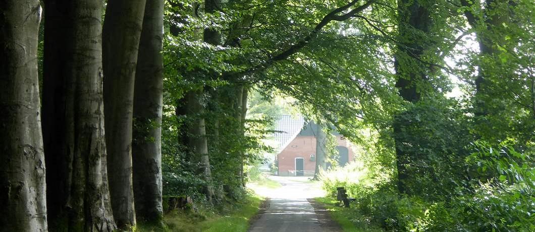 boerderij-fietsen-stiltegebieden-twente-davides