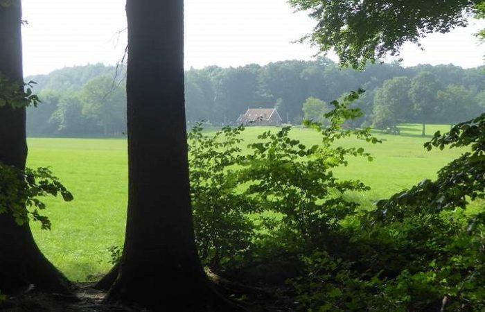 Heuvellandschap tijdens de fietsroute Stiltegebieden in Twente