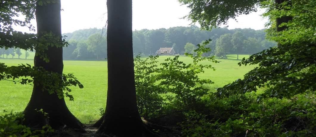 landschap-fietsroute-stiltegebieden-twente-davides