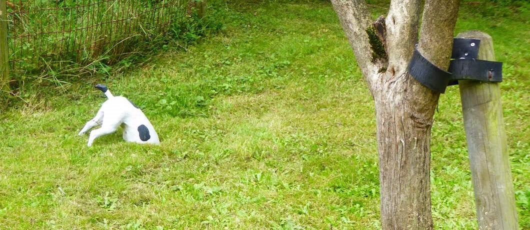 jack-russell-beeld-benb-villa-boskamp-enschede-davides