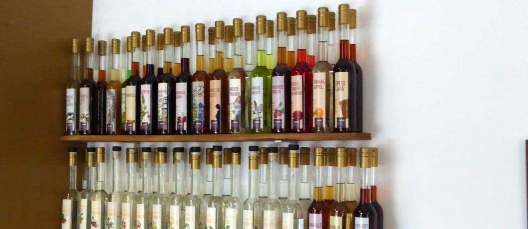 Distilleerderij en proeflokaal 't Nieuwe Diep verborgen in het groen